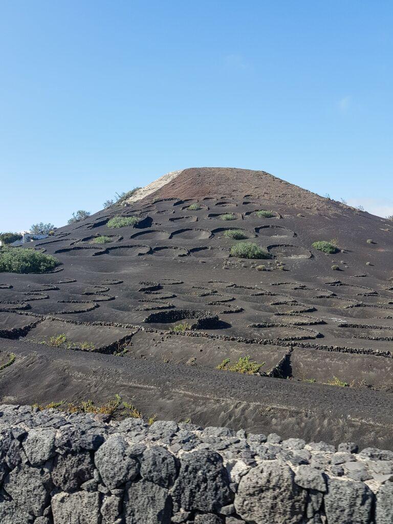 route des vignes sur un volcan noir la geria à lanzarote