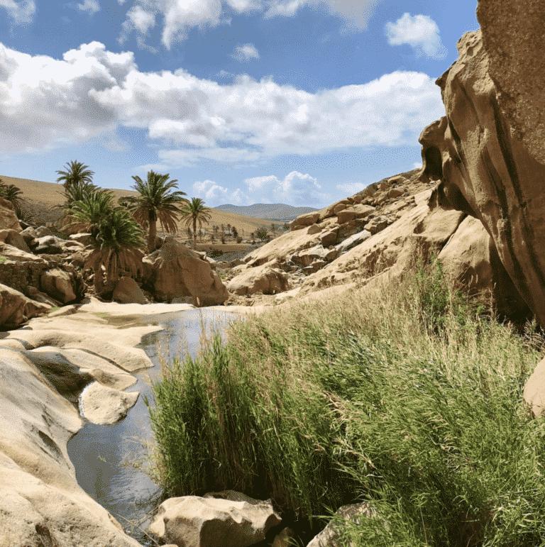 Las Penitas Vegal El Rio à Fuerteventura