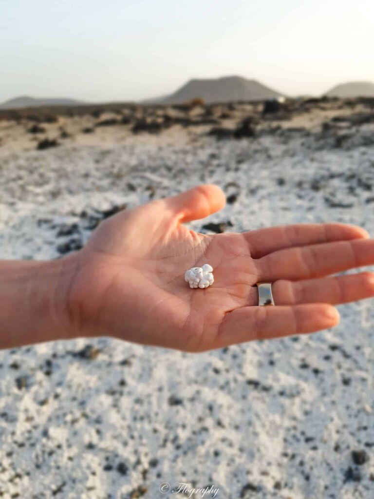 sable en forme de popcorn à Playa del Bajo de la Bura Fuerteventura