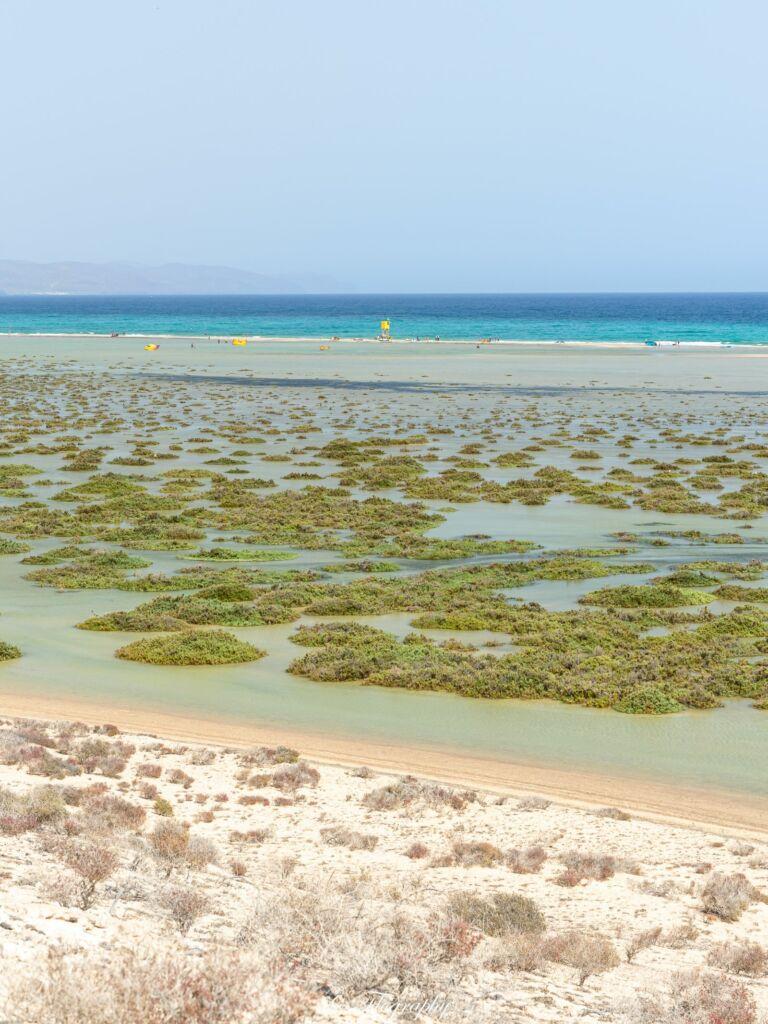lagune de Sotavento à Fuerteventura
