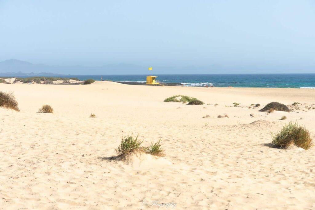 plage grandes playas Corralejo Fuerteventura