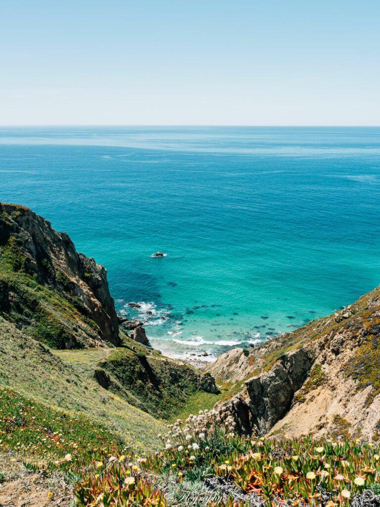 Cabo da Roca océan et fleurs au Portugal