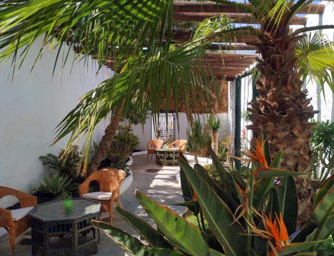 jardin avec plantes exotiques de los Lirios Lanzarote